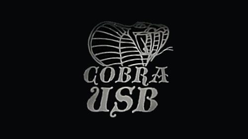 PS4_Cobra_USB